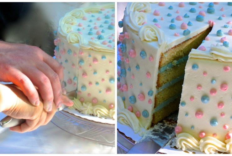 Gender Reveal and Baby Shower