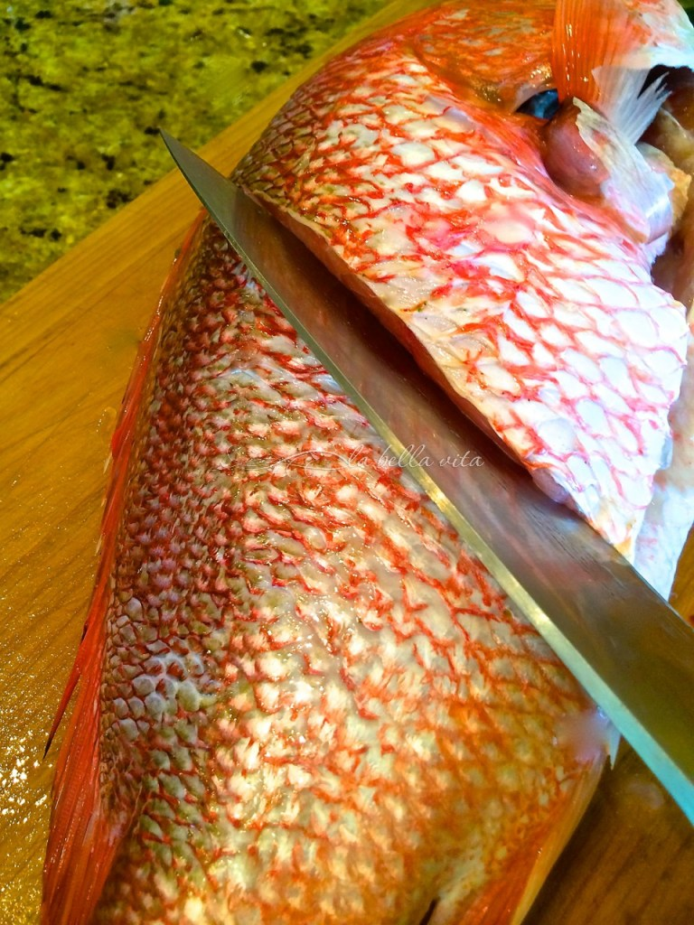 Caribbean Fried Red Snapper Potfish
