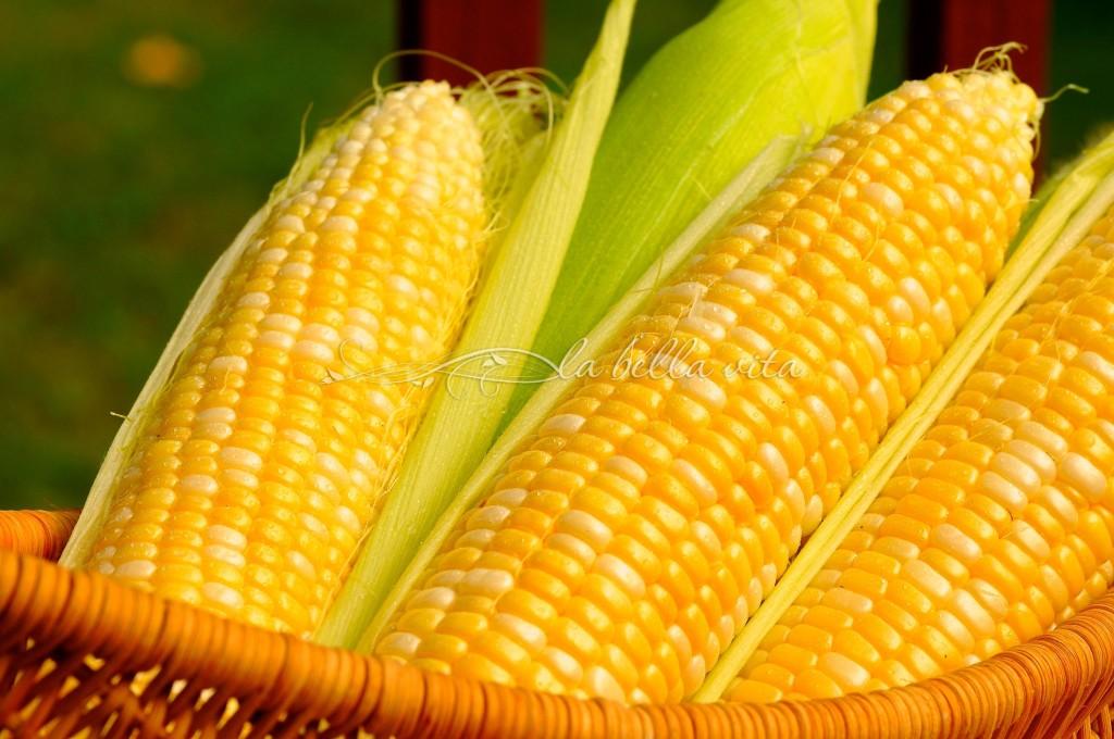 creamy fiesta corn dip