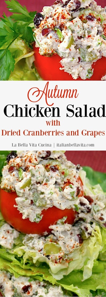 Autumn Chicken Salad with Dried Cranberries and Grapes