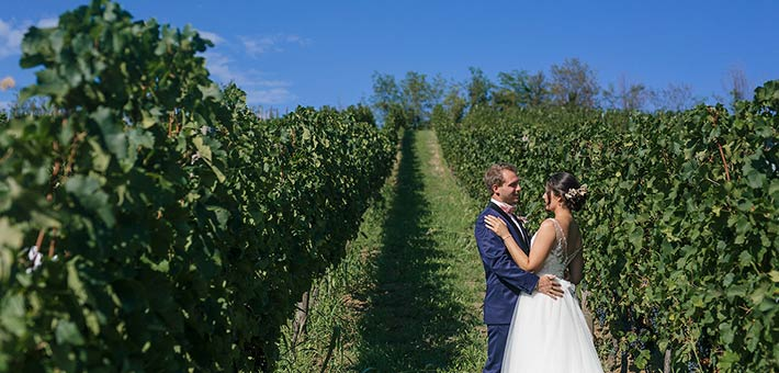 First Look Photo Session in the vineyards