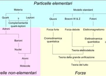 """""""Particle overview it"""" di Headbomb (original work); Mess (Italian translation) - File:Particle overview.svg. Con licenza CC BY-SA 3.0 tramite Wikimedia Commons."""