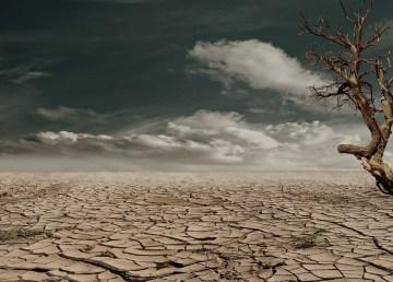 Deserto (Fonte foto Pixabay)