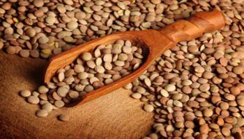 In Italia soia e legumi bio da primato europeo