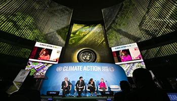 Non solo Greta Thunberg all'Onu per il summit sul clima. Le iniziative per salvare il pianeta
