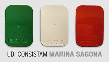 UBI CONSISTAM di Marina Sagona