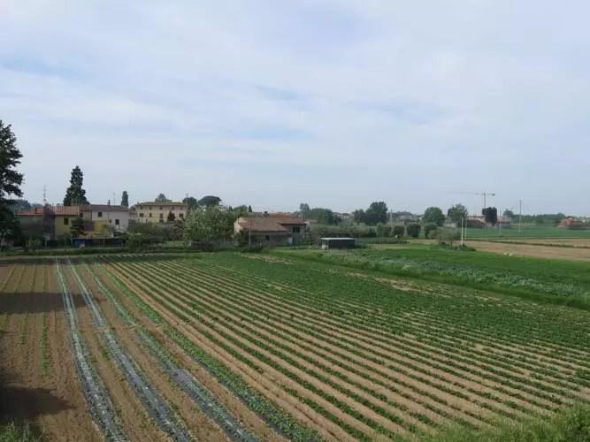 Paesaggio  Cascina la pianura  Italia Nostra