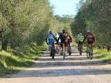 Domenica 30 ottobre alle ore 9.30 partirà la seconda edizione del giro cicloturistico Tour Vinsanto Bike, che attraversa il bellissimo territorio di Torrita di Siena, con viste e paesaggi mozzafiato.
