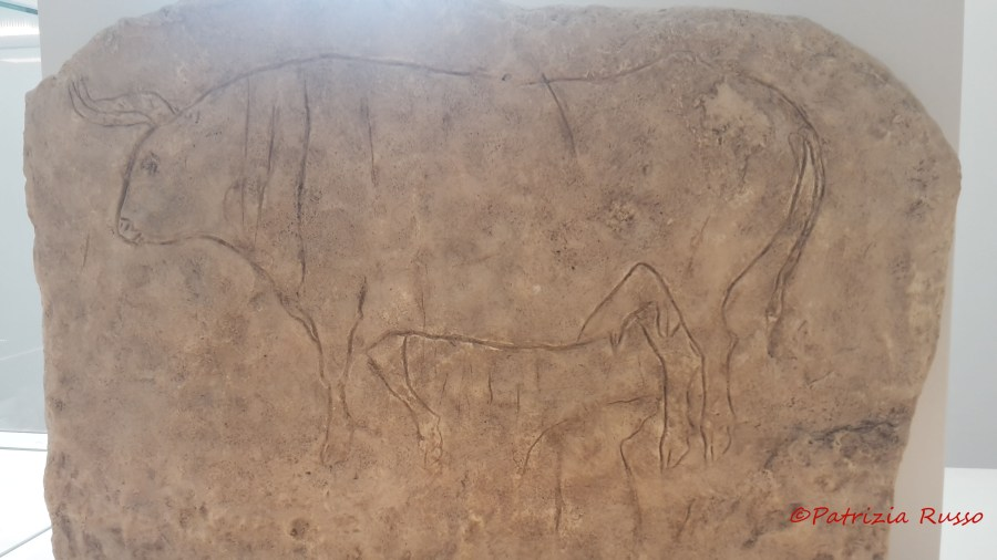 MarRc Museo Reggio Calabria calco graffito rupestre papasidero