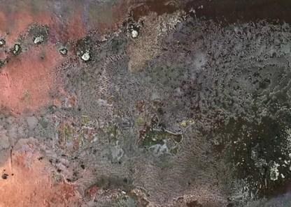 Allucinazione mostra Denis Volpiana Fiorillo 12