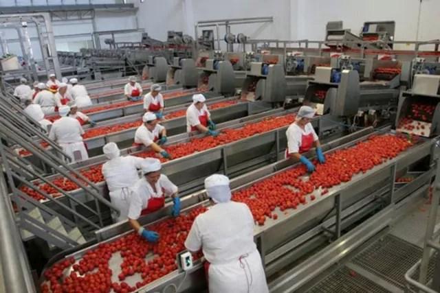 Puglia economia industria conserve pomodoro