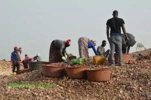 Senegal: la sgusciatura dei molluschi Djffer (Ph. P.Russo/IT24).