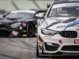 Bmw Gt6 e Bmw Gt6 in gara nel Campionato Italiano Gran Turismo (ph. BMW).