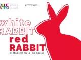 White Rabbit Red Rabbit: il 13 marzo in scena al Delle Muse e in 200 teatri del mondo