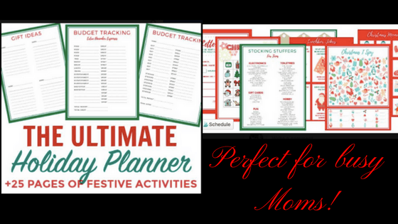 Best Holiday Planner for Busy Moms!