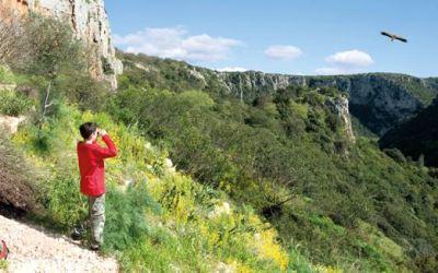Eventi Natura 2018 – Escursione pomeridiana in Oasi