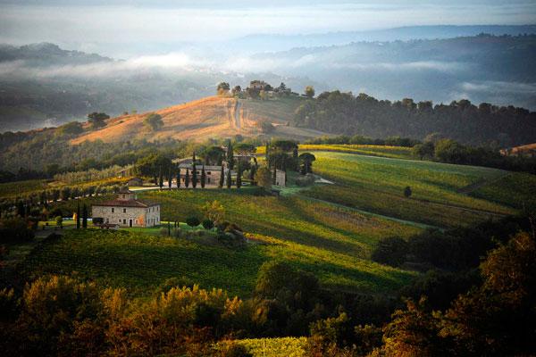 Decugnano dei Barbi: wijndomein vanaf het XIII eeuw