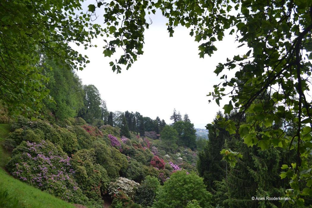 Parco Burcina, een natuurpark tussen Biella en Pollone