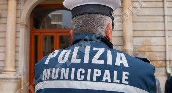 Palermo, Frodi Alimentari. Tutti i numeri del 2016 della Polizia Municipale