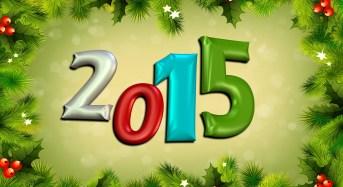 Un bilancio economico per l'anno 2014
