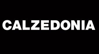 Calzedonia ricerca diverse figure professionali