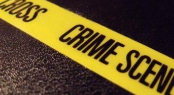 Due minorenni di 15 e 16 anni accusati di omicidio e occultamento cadavere