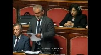 Auchan. Senatore Campanella presenta interrogazione su 1.500 esuberi annunciati dal gruppo