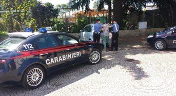 Albanese sospettato di far parte di una banda dedita a rapine e furti in case: Arrestato