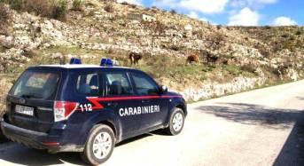 Deturpa il paesaggio in zona plurivincolata, carabinieri denunciano milanese e sequestrano immobile.