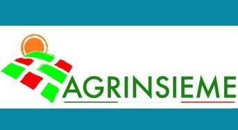 PSR 14/20, aperti i bandi pubblicati a luglio: Il commento di Agrinsieme Campania