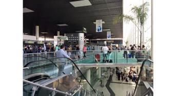 Volotea sempre più forte a Catania: Dall'anno prossimo si vola anche verso napoli