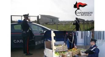 Ispica. Carabinieri a difesa delle zone rurali e imprese agricole: Tre arresti per furto