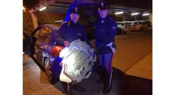 Inseguimento sull'A1. La Polizia di Stato evita una strage e recupera quasi due quintali di hashish