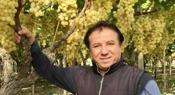 Elezione del presidente del Consorzio di Tutela dell'Uva da Tavola di Mazzarrone Igp: riconfermato Giovanni Raniolo