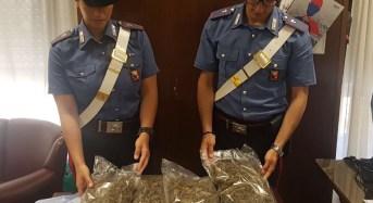 Nasconde 2 chili di marjiuana in casa, 32enne arrestato dai carabinieri