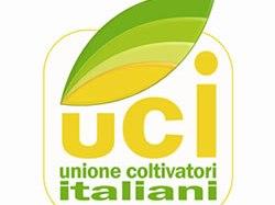 """Unione Coltivatori Indipendenti Ragusa (UCI): """"Una riflessione sullo stato di crisi dell'agricoltura nel panorama sia locale che globale"""". Riceviamo e pubblichiamo"""