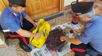 Altofonte. Sorpreso a bruciare cavi in rame, 42enne arrestato dai carabinieri