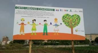 """Ragusa. Un orto sociale che diventa """"giardino delle api"""""""