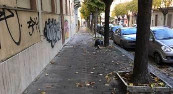 """Ragusa in movimento: """"Viale Leonardo Da Vinci tra graffiti e sacchi della spazzatura abbandonati"""""""