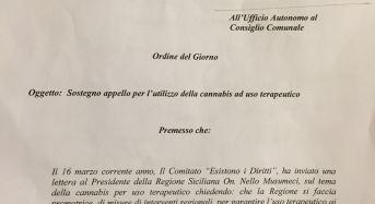 Palermo. Uso terapeutico della cannabis: Il Consiglio Comunale approva Ordine del giorno