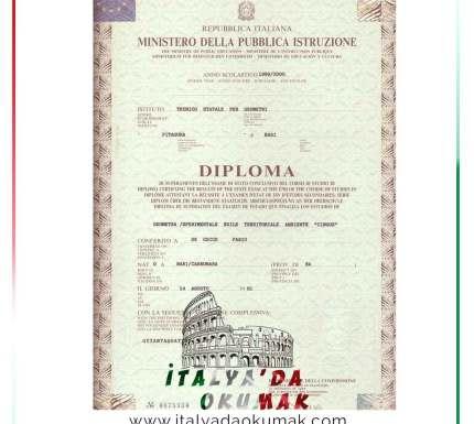 matiruta-diplomasi-nedir