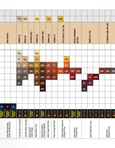 Download colour chart also colorly italy hair and beauty rh italyhairbeauty