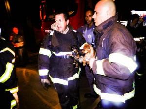 Filhotes foram resgatados por bombeiros (Portal Mogi Guaçu)