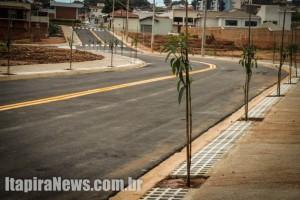 Plantio começará por vias principais, diz Prefeitura (Arquivo)
