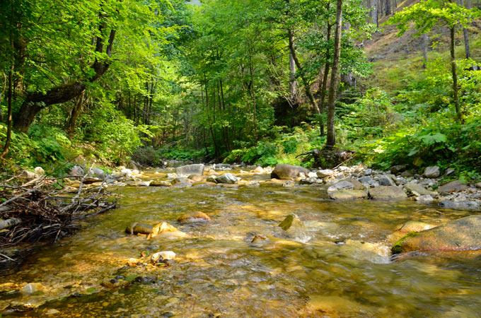 Река Белица