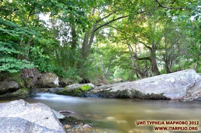 Река Трновчица