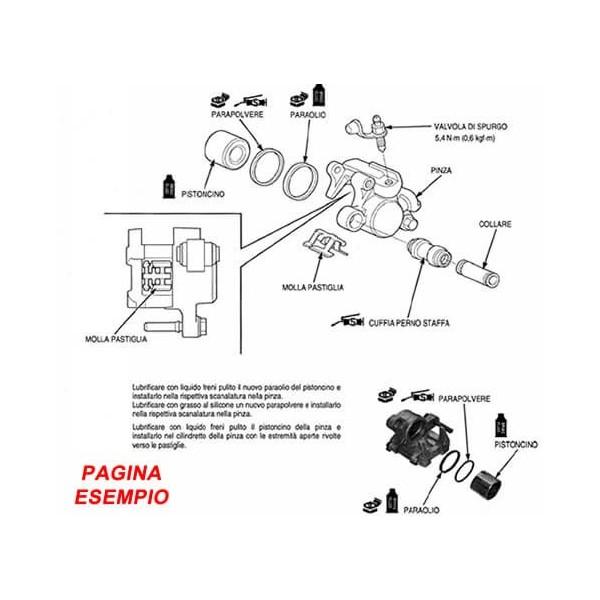 E1855 Manuale officina per scooter Malaguti Madison 250