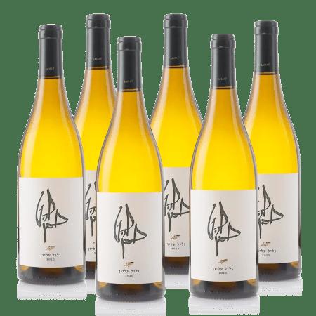 חבילת יין להט לבן