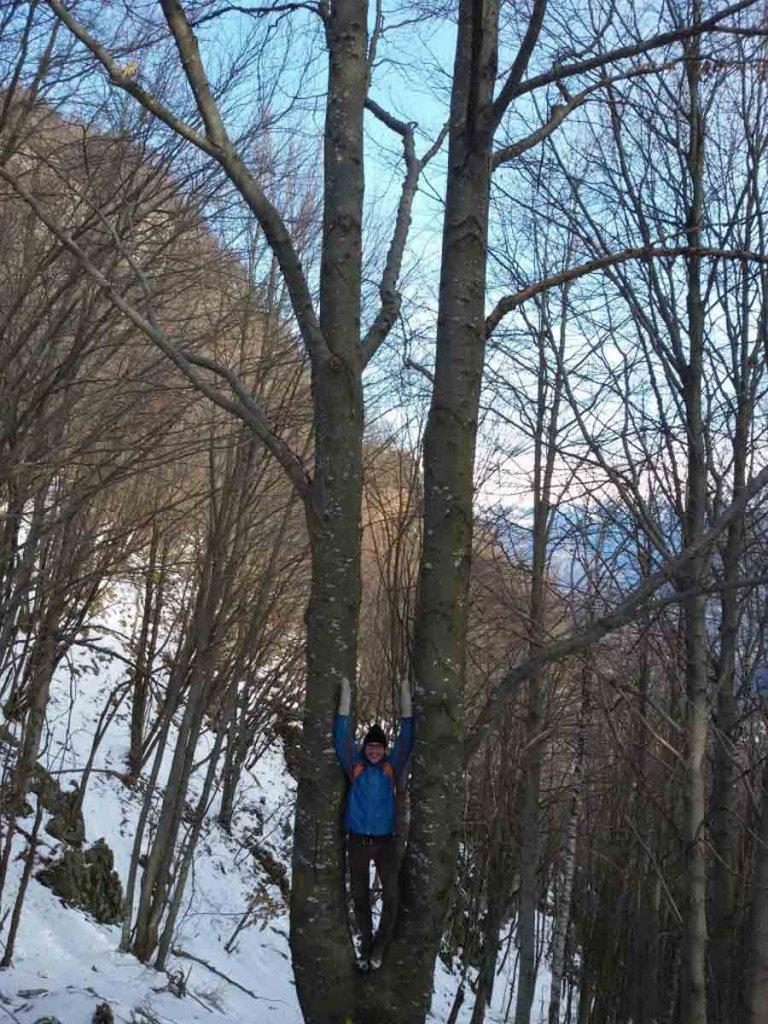 2016-02-24-Alberto-Yi Gong Legno-1