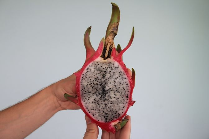 fruits of Vietnam dragon fruit thanh long